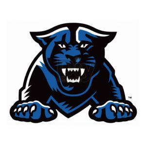 Georgia State Panthers Logo Iron-on Transfers (Heat Transfers) N4489